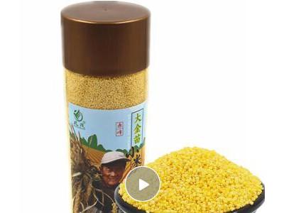 凡茂 18年新黄小米 小米杂粮 米面杂粮 赤峰小米桶装1kg