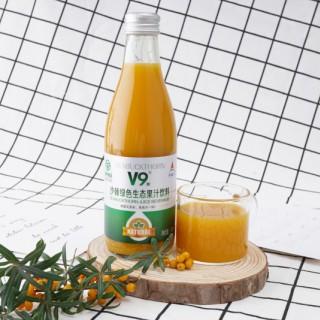 沙棘绿色生态果汁饮料