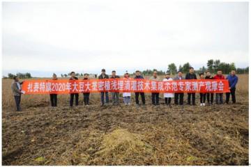 内蒙古大豆大垄密植浅埋滴灌栽培技术再次刷新高产纪录